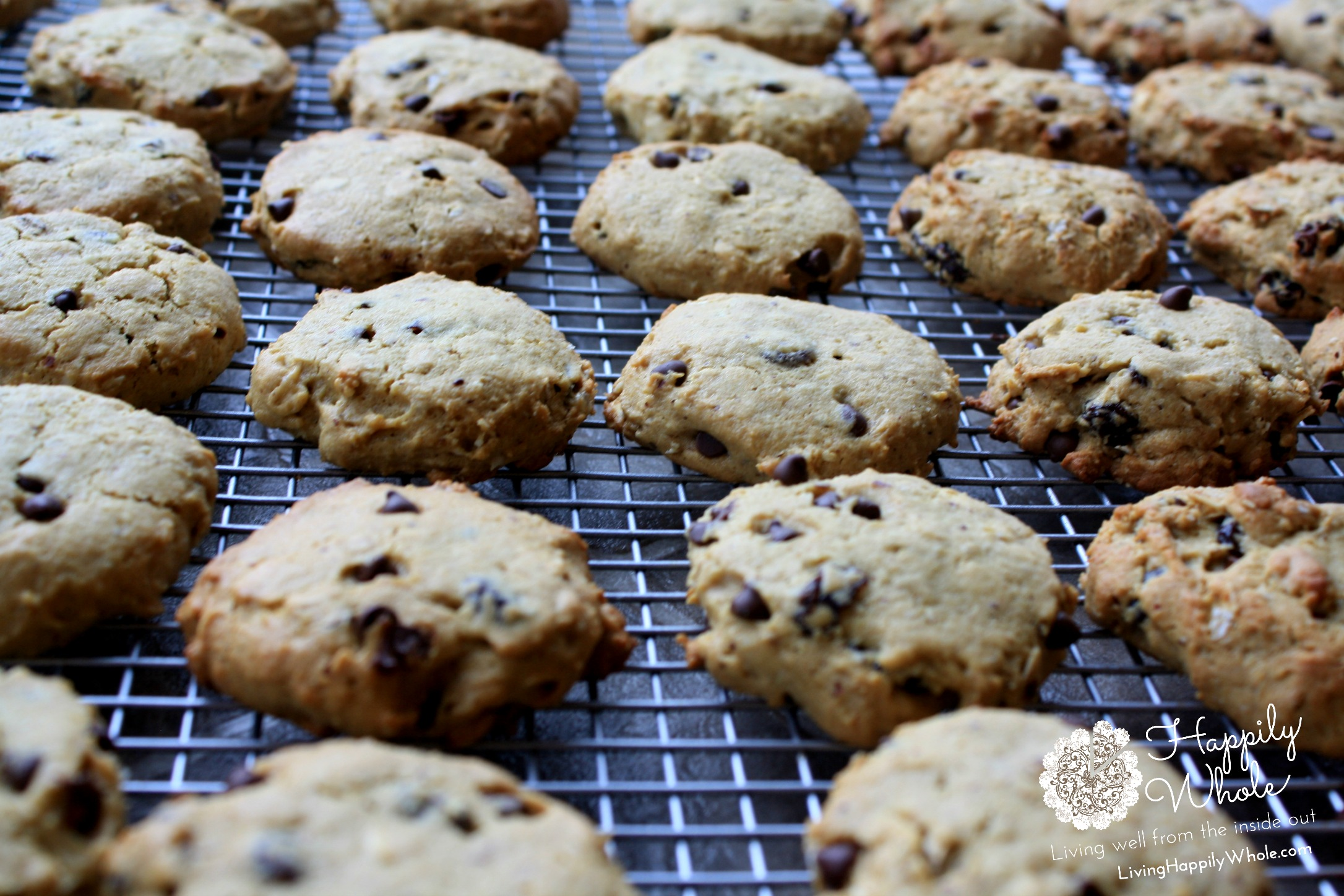 A Recipe Worth A Laugh Gluten Free Healthy Breakfast Cookies