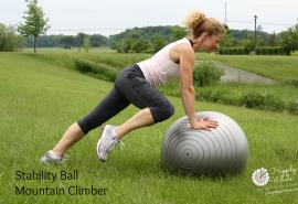 Stability Ball Mountain Climber