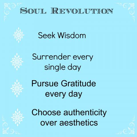 Seek a soul revolution instead of a New Year's Resolution this year!