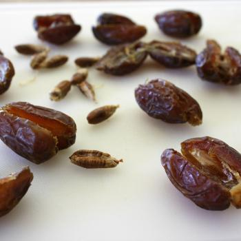 Decadent Dates-Sliced