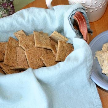 Gluten Free MultiGrain Cracker snack with hummus