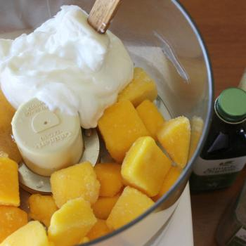 Mango Frozen Yogurt in food processor