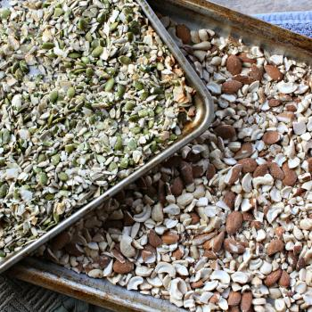Seeds and Nuts after they've been toasted and coarsely chopped