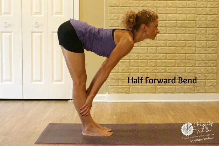 Half Forward Bend