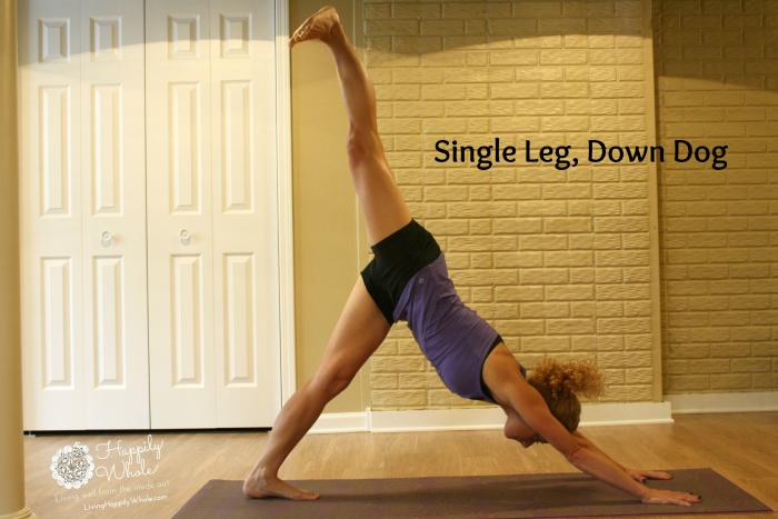 Single Leg Downward Facing Dog